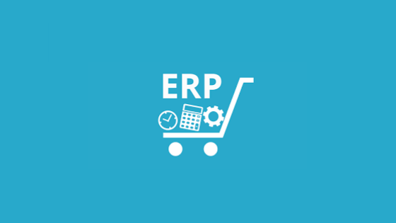 Microsoft Business Central Partner: Great ERP solution!