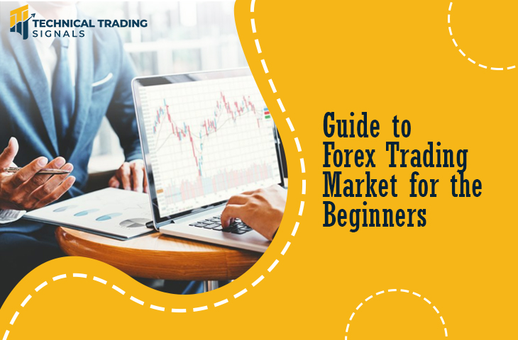 Complete Guide for the Beginners about Forex Trading Market