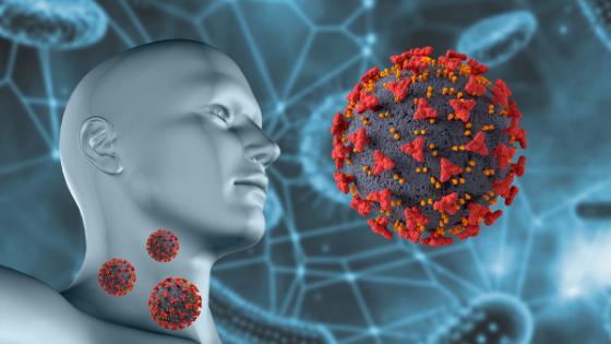 Coronavirus Vaccines - Approved?
