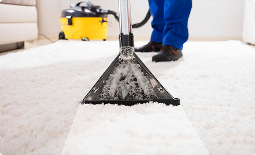 How Is Dust Removed From The Carpet By Professional Experts?